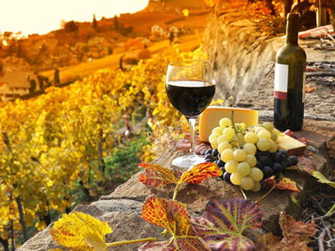 Day trip to the Chianti Region and Siena OR San Gimignano