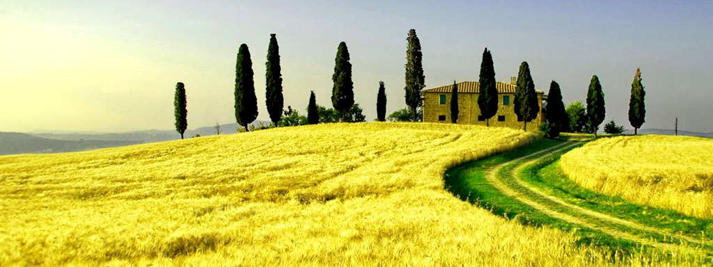 Day trip to the Chianti Region 3